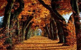 Planes para el primer finde de otoño