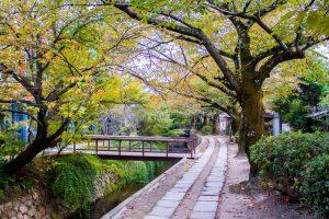 13 días en Japón: El paseo del filósofo