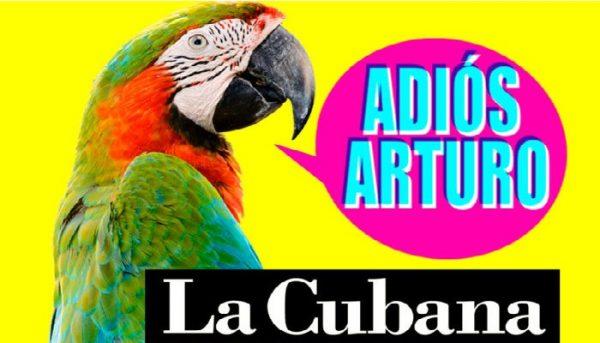 La Cubana vuelve a Alicante 16 años después.